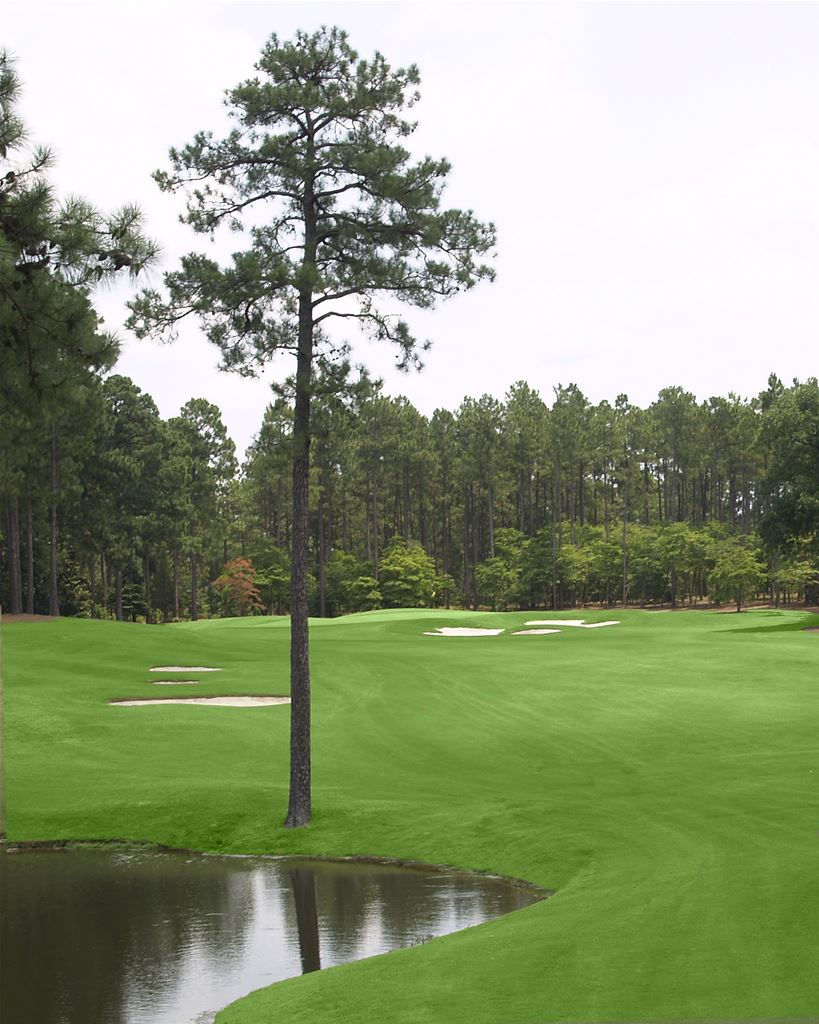 Pinewild Magnolia Course in Pinehurst, North Carolina